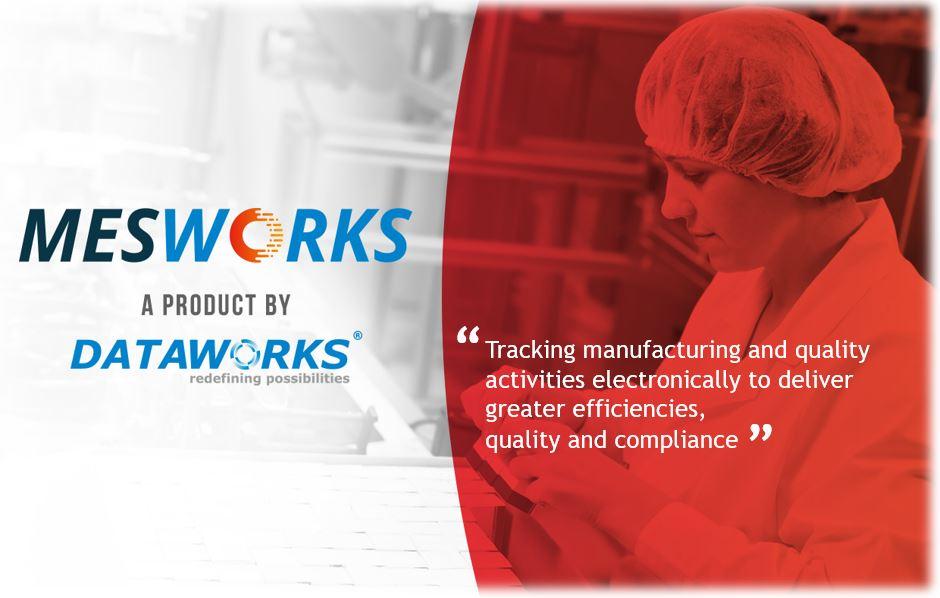 MESWorks